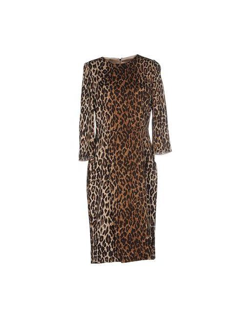 Dolce & Gabbana | Женское Коричневое Платье До Колена
