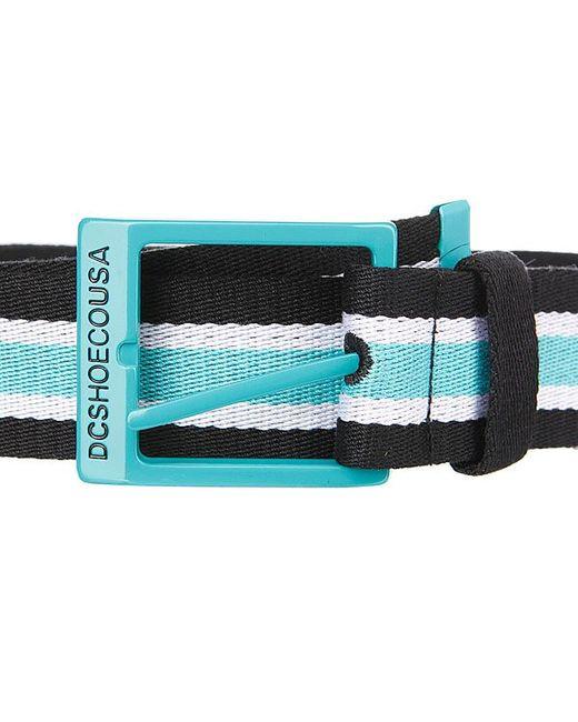 Ремень Dc Rd Webster Belt Black/Cyan Dcshoes                                                                                                              None цвет