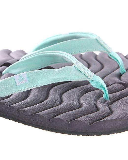 Вьетнамки Женские Super Swell Grey Reef                                                                                                              голубой цвет