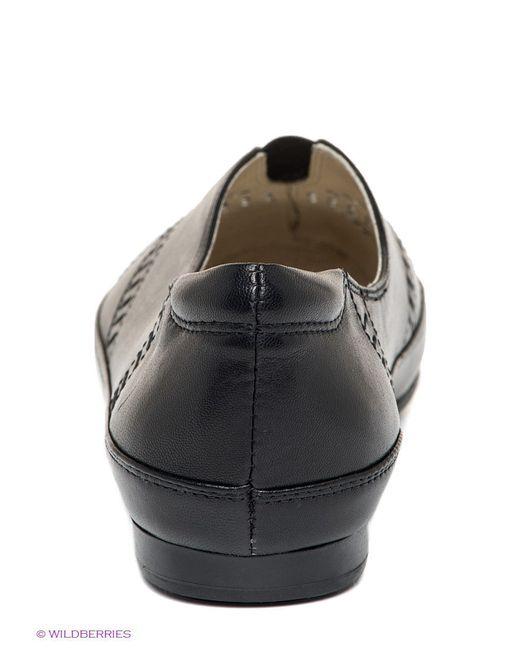 Туфли Palazzo D'oro                                                                                                              чёрный цвет