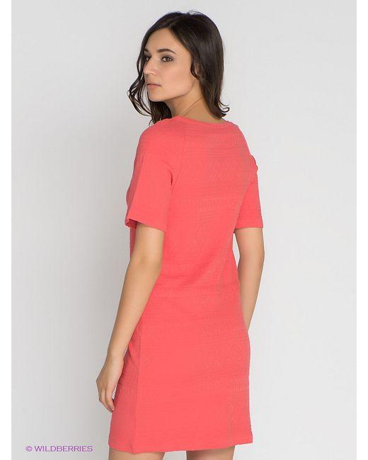 Платья Vero Moda                                                                                                              розовый цвет