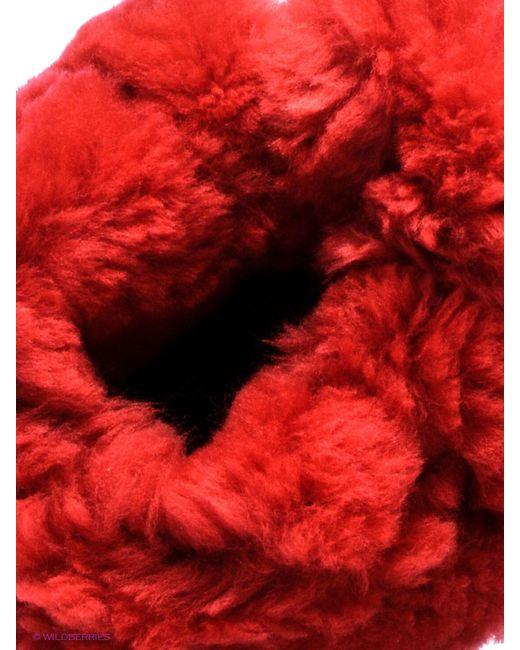 Полусапожки Evita                                                                                                              красный цвет