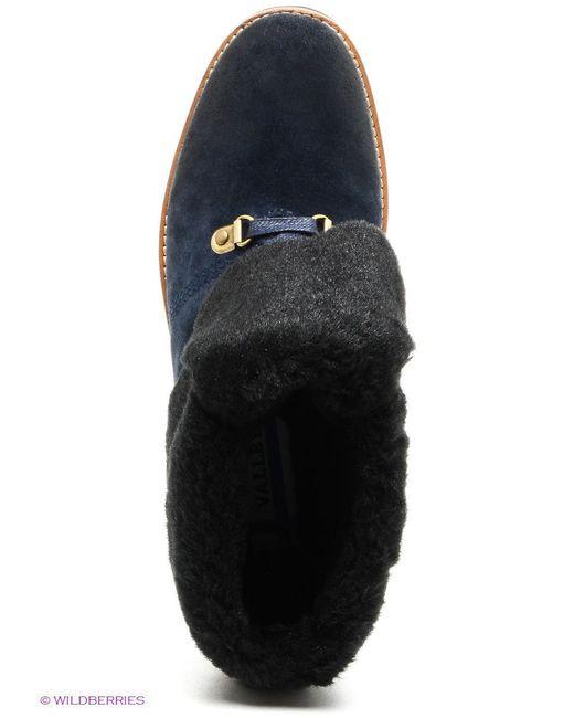 Ботинки Valley                                                                                                              синий цвет