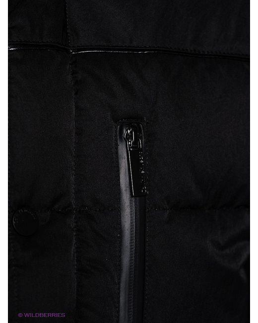 Пуховики Calvin Klein                                                                                                              чёрный цвет