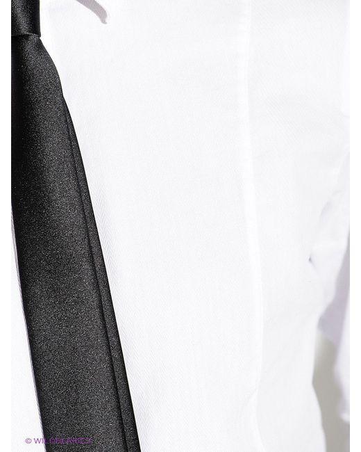 Рубашки Guess                                                                                                              белый цвет