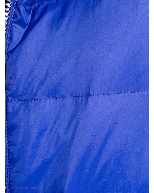 Пуховики Pepe Jeans London                                                                                                              синий цвет