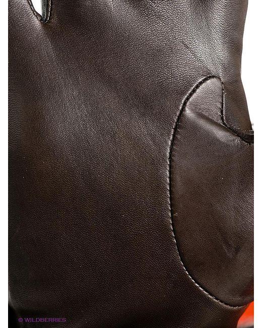 Перчатки Eleganzza                                                                                                              коричневый цвет