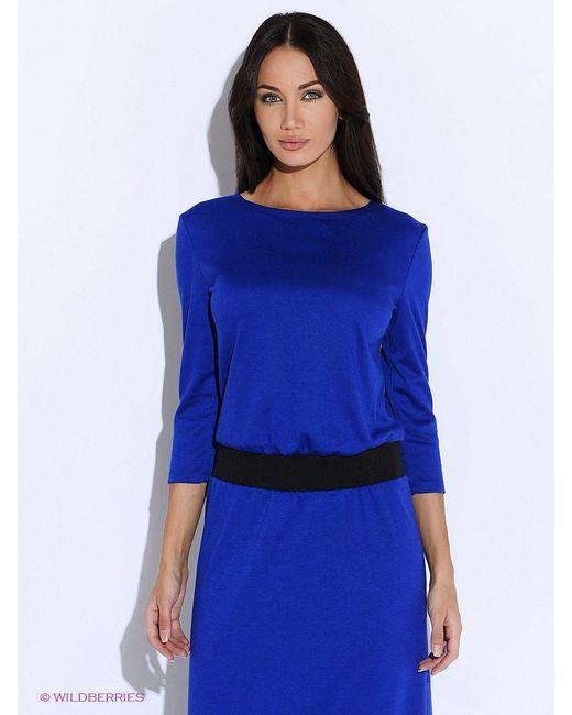 Платья Colambetta                                                                                                              синий цвет