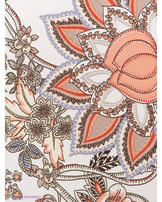 Кофточки Oltre                                                                                                              коричневый цвет