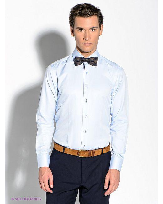 Рубашки Alex Dandy                                                                                                              голубой цвет