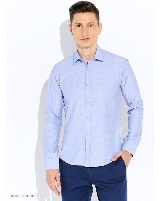 Рубашки BAWER                                                                                                              None цвет