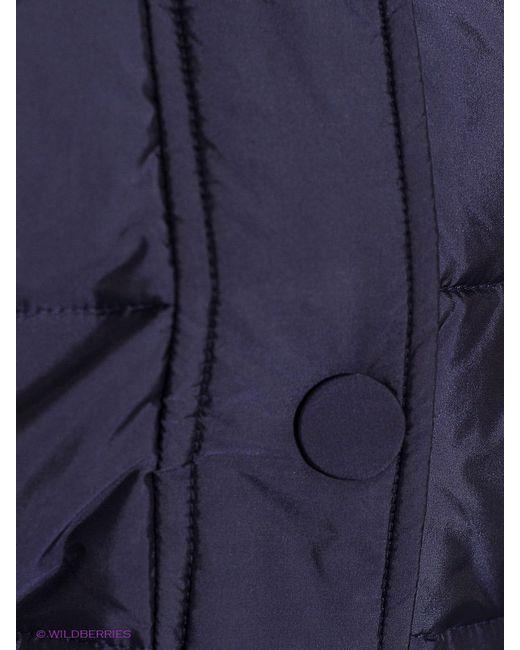 Пуховики Baon                                                                                                              синий цвет
