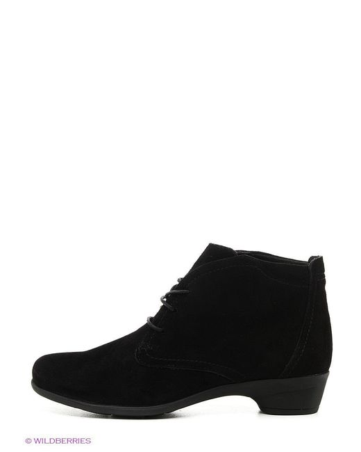 Ботинки Tervolina                                                                                                              чёрный цвет