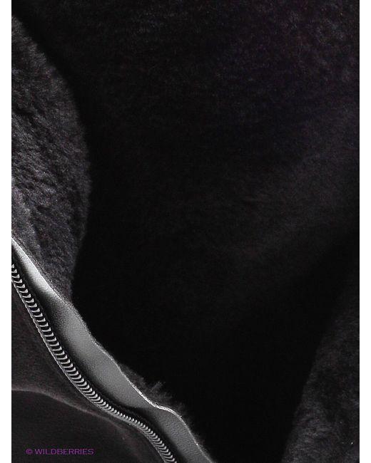 Сапоги Amazonga                                                                                                              чёрный цвет