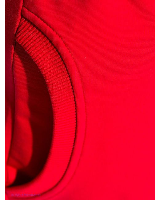 Шорты D.S                                                                                                              красный цвет