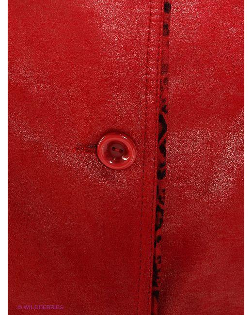 Плащи Socrat                                                                                                              красный цвет