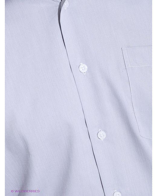 Рубашки Conti Uomo                                                                                                              серый цвет