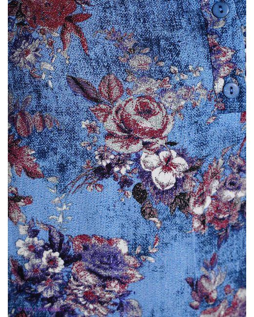 Блузки Битис                                                                                                              голубой цвет