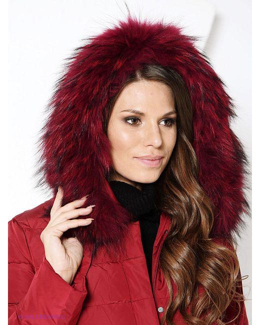 Куртки VIZANI                                                                                                              красный цвет