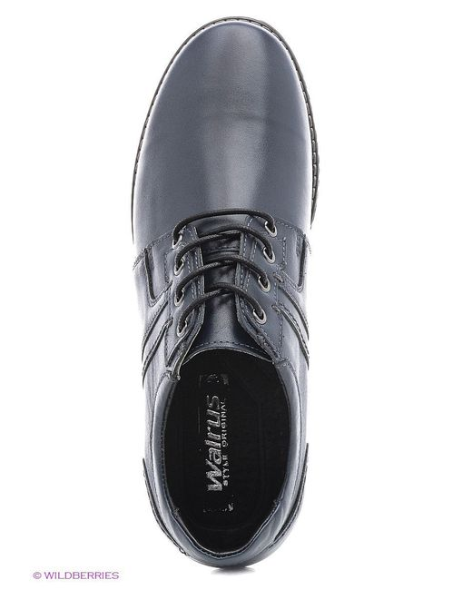 Ботинки Walrus                                                                                                              синий цвет