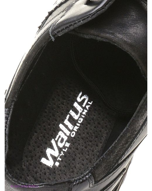 Кеды Walrus                                                                                                              чёрный цвет