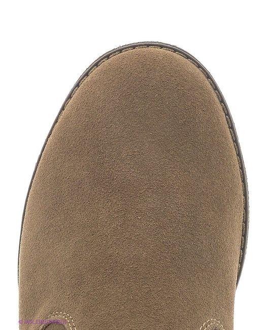 Полусапожки Ascot                                                                                                              коричневый цвет