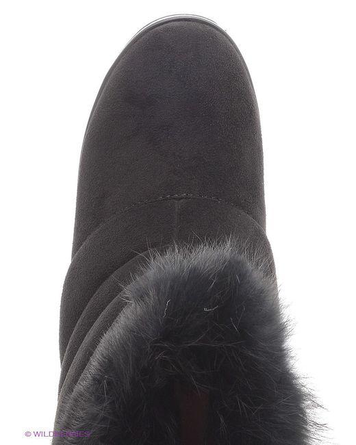Полусапожки Daze                                                                                                              чёрный цвет