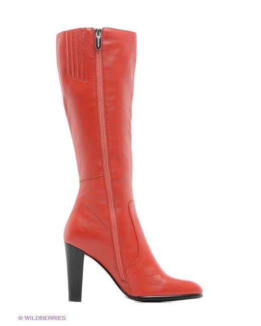 Сапоги Moda Donna                                                                                                              красный цвет