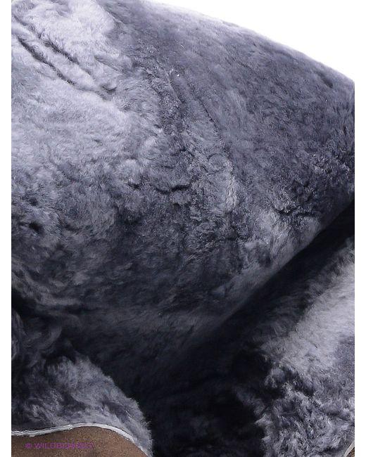 Сапоги Covani                                                                                                              коричневый цвет