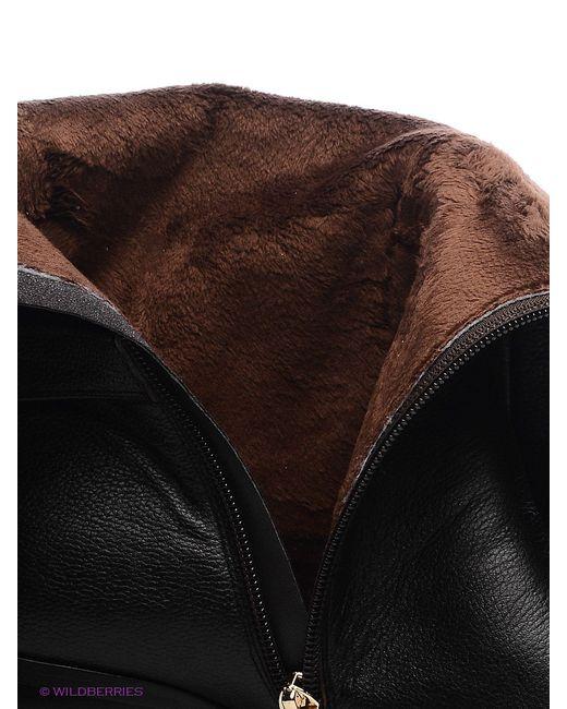 Сапоги Covani                                                                                                              чёрный цвет