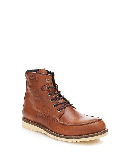 Ботинки Guess                                                                                                              коричневый цвет