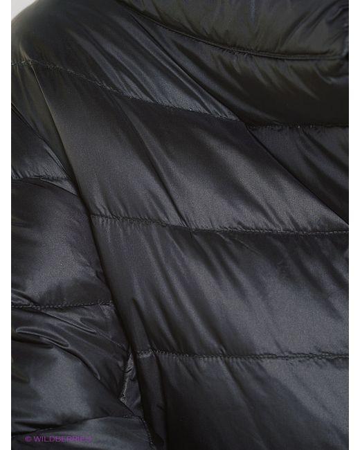 Куртки Compagnia Italiana                                                                                                              чёрный цвет