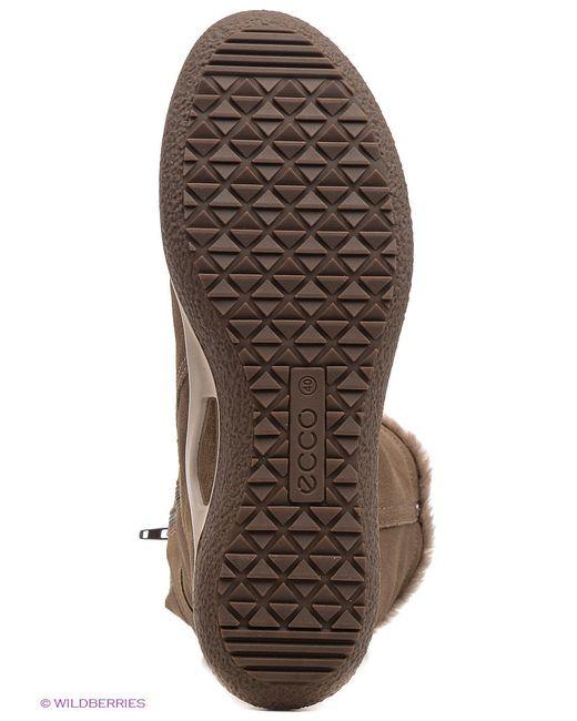 Сапоги Ecco                                                                                                              коричневый цвет