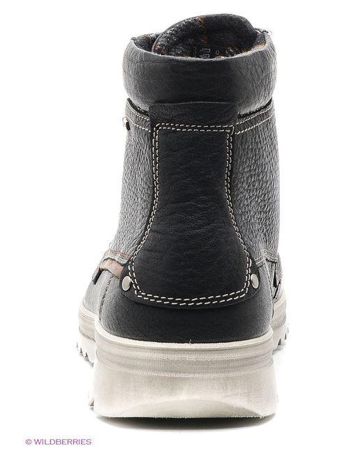 Ботинки Ecco                                                                                                              чёрный цвет