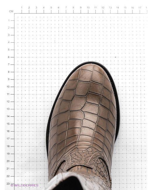Сапоги Vivian Royal                                                                                                              коричневый цвет