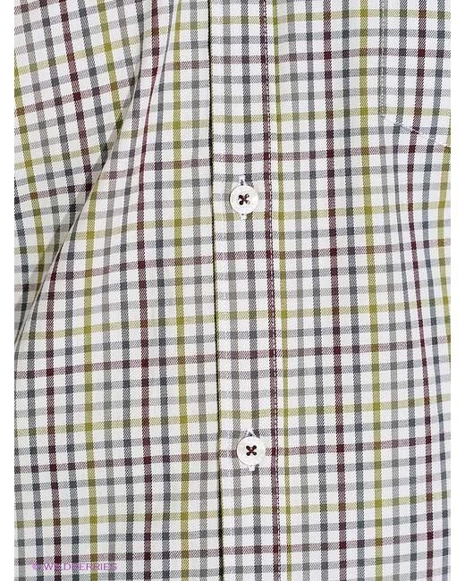 Рубашки LERROS                                                                                                              хаки цвет