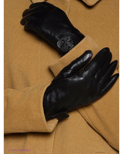 Перчатки ARBOR VITAE                                                                                                              чёрный цвет