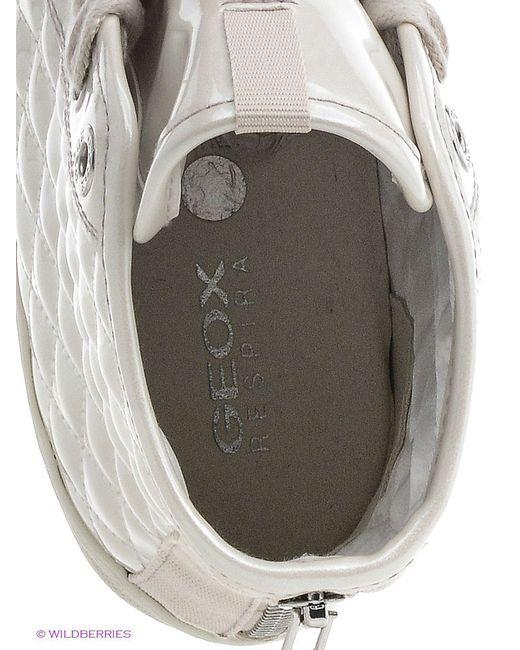 Кроссовки Geox                                                                                                              серый цвет