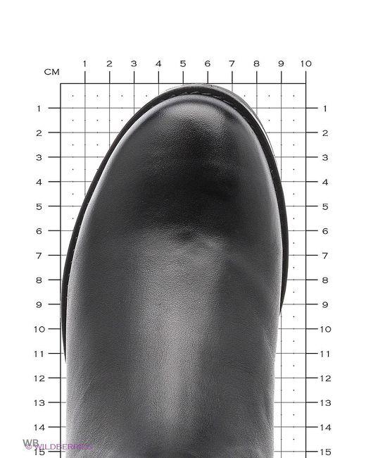 Сапоги Milana                                                                                                              чёрный цвет