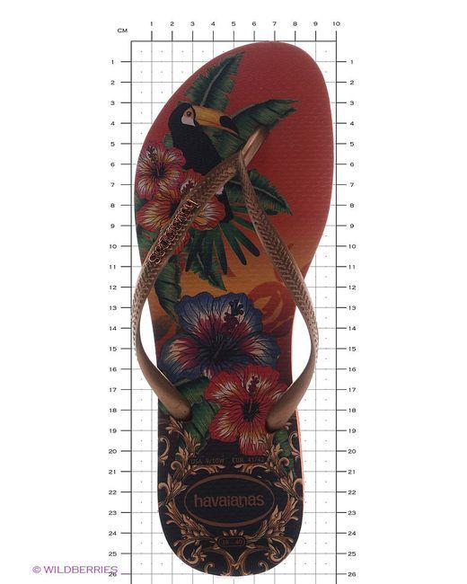 Шлепанцы Havaianas                                                                                                              оранжевый цвет