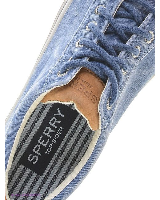 Кеды SPERRY top-sider                                                                                                              синий цвет