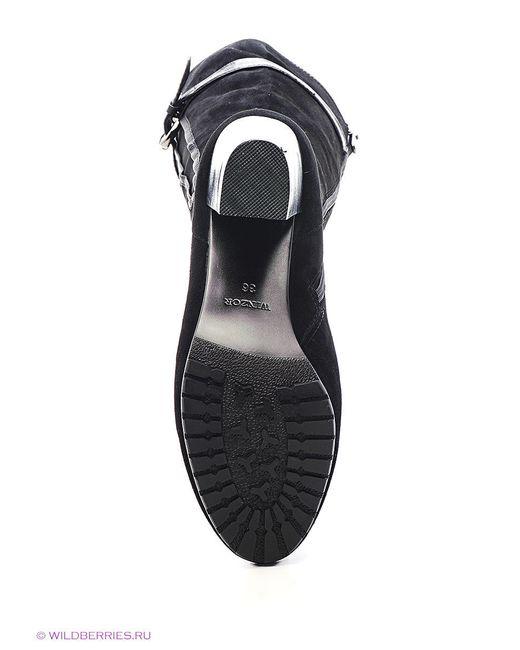 Сапоги Winzor                                                                                                              чёрный цвет