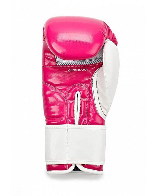Перчатки Боксерские adidas Combat                                                                                                              розовый цвет