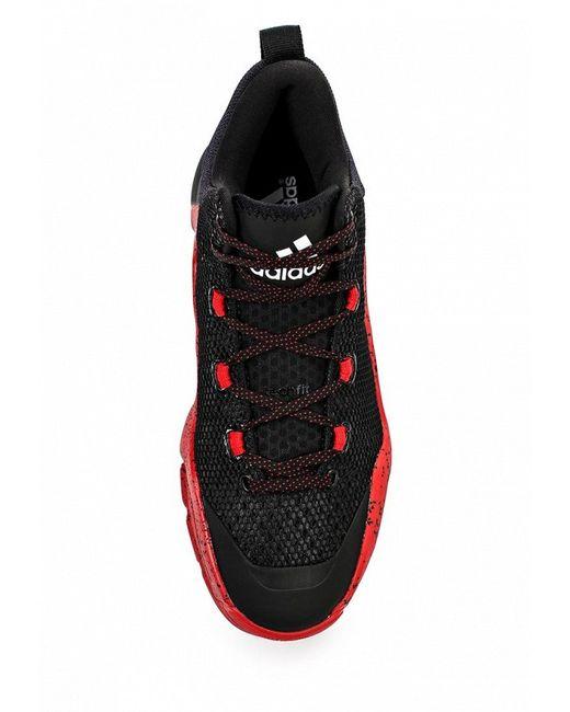 Кроссовки adidas Performance                                                                                                              чёрный цвет