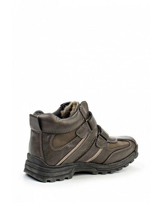 Ботинки Hanson                                                                                                              коричневый цвет