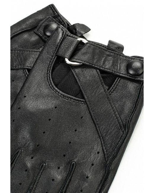 Митенки Karl Lagerfeld                                                                                                              чёрный цвет