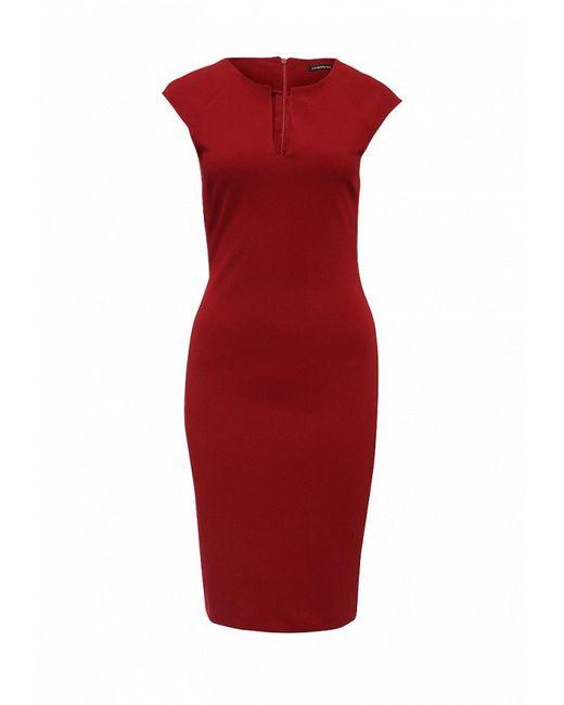 Платье MOTIVI                                                                                                              красный цвет