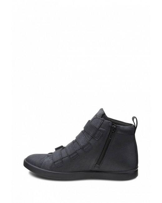 Ботинки Aimee Ecco                                                                                                              чёрный цвет