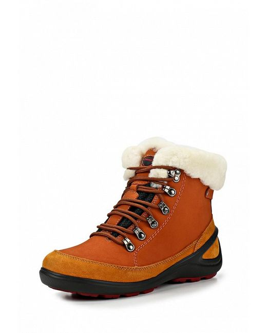 Ботинки Трекинговые Strobbs                                                                                                              коричневый цвет