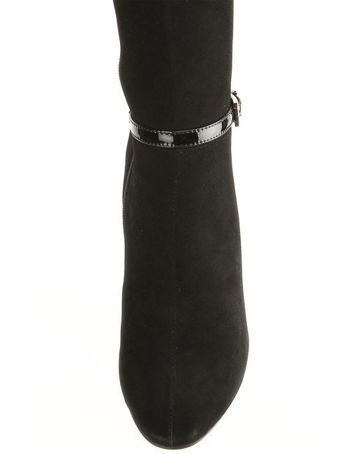 Сапоги Antonio Biaggi                                                                                                              чёрный цвет